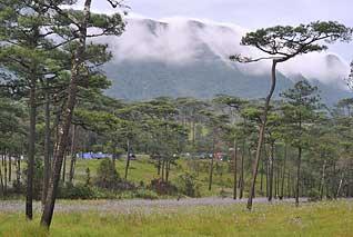 ภูสอยดาว ป่าสงวนแห่งชาติป่าน้ำปาด ท้องที่ตำบลม่วงเจ็ดต้น ตำบลนาขุม ตำบลบ้านโคก อำเภอบ้านโคก ตำบลห้วยมุ่น อำเภอน้ำปาด จังหวัดอุตรดิตถ์ ตำบลบ่อภาค อำเภอชาติตระการ จังหวัดพิษณุโลก