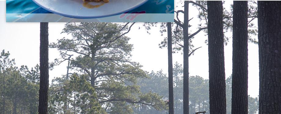 ไปไหนดี ที่เที่ยว ภูกระดึง ไทยเที่ยวไทย เที่ยวทั่วไทย บทความประกวด น้ำ-ฟ้า-ป่า-เขา เที่ยวภูเขา เลย เที่ยวเมืองไทย เว็บท่องเที่ยว อุทยานแห่งชาติภูกระดึง  diaryaward2014 ที่เทียวเลย เที่ยวอุทยานแห่งชาติ ผานกแอ่น  ลานวัดพระแก้ว  วังกวาง  สระอโนดาต ผาจำศีล