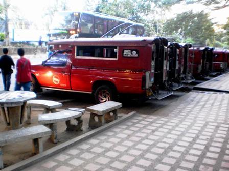 รถแดงเมืองเชียงใหม่ ท่าหน้าสวนสัตว์เชียงใหม่ รอรับผู้โดยสารทัวร์ดอยสุเทพ