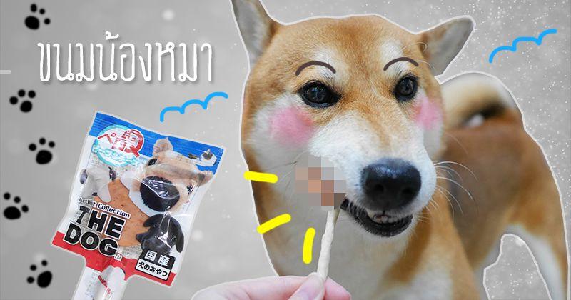 ขนมหมา ชิบะอินุ ฟูจีจี้