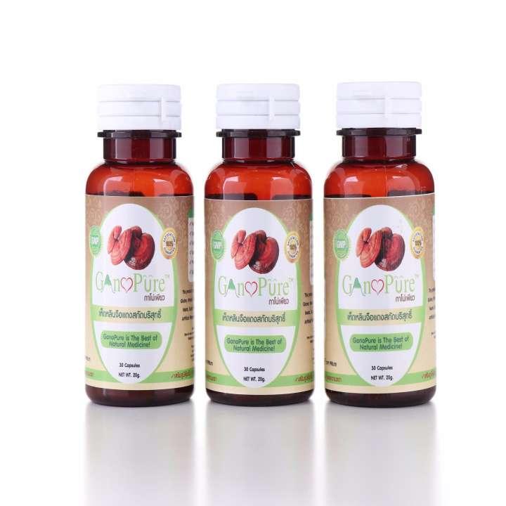 Gano Pure เห็ดหลินจือแดง ซ่อมเซลล์ ชลอวัย ต้านโรค