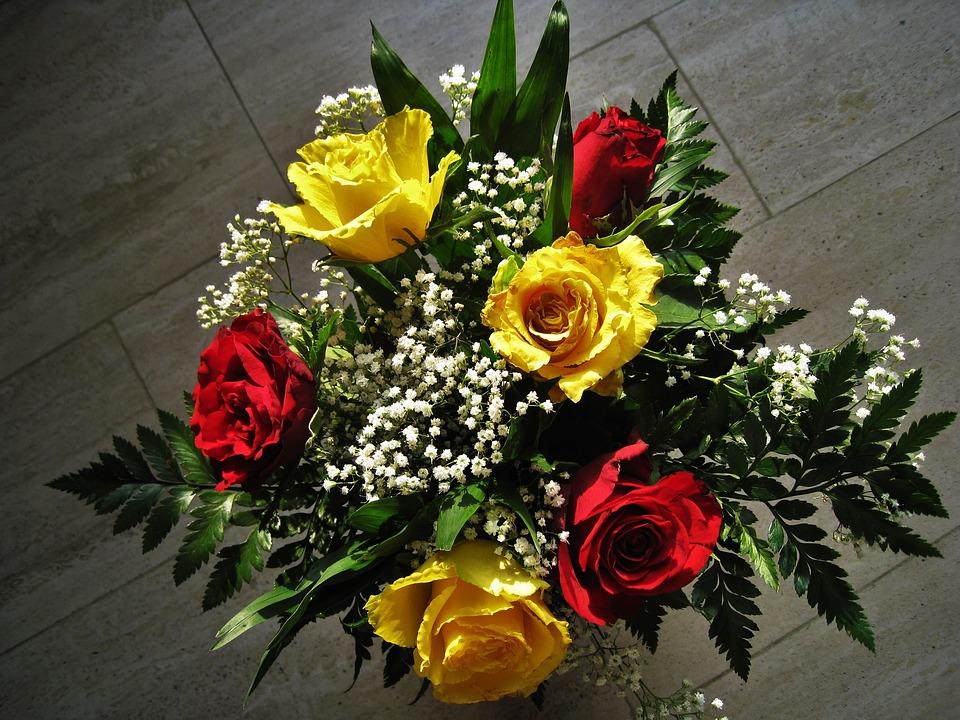 ดอกกุหลาบง้อแฟน สีแดง-เหลือง